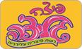 תמונת לוגו פיצה גליצ'ה באר שבע